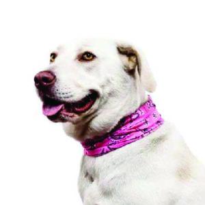 Dog Buff®